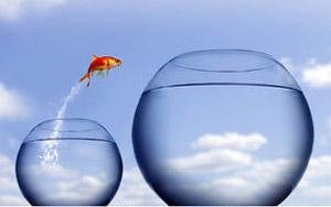 fishbowl300